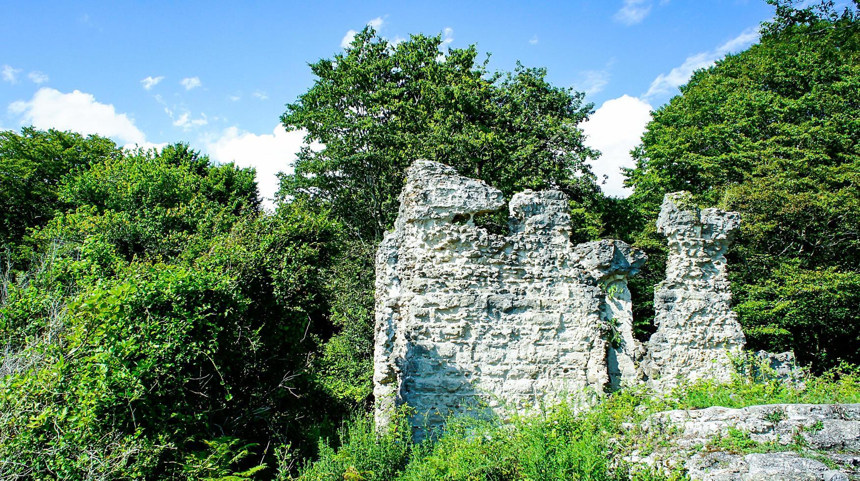 natuurlijk landschap met ruïnes op de achtergrond van bomen. foto