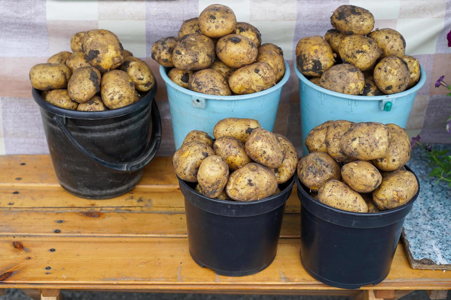 aardappelen in emmers op een houten oppervlak foto