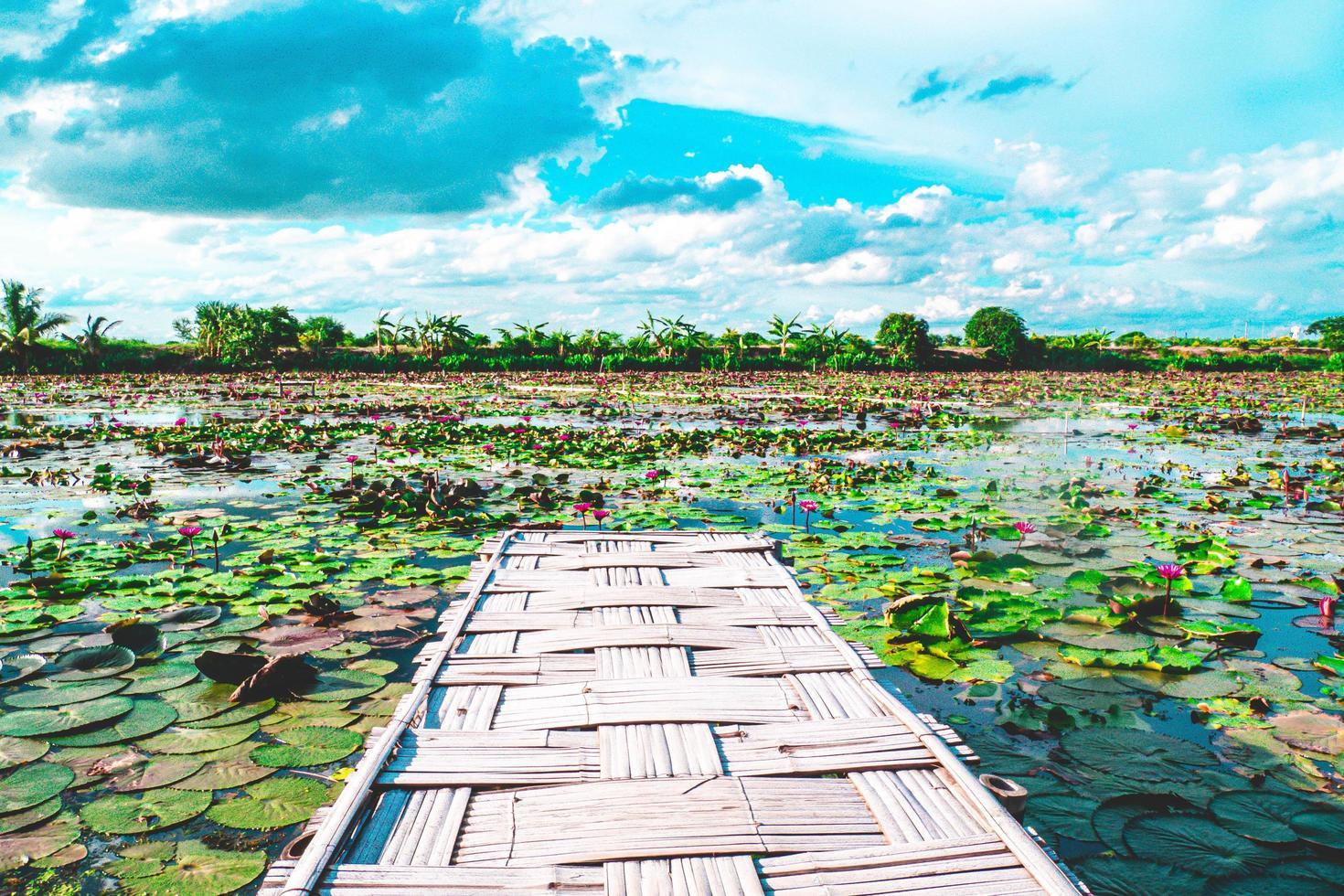 panoramisch uitzicht bamboe brug foto