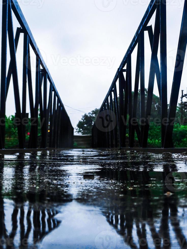 natuurfotografie van de brug in het natuurseizoen foto