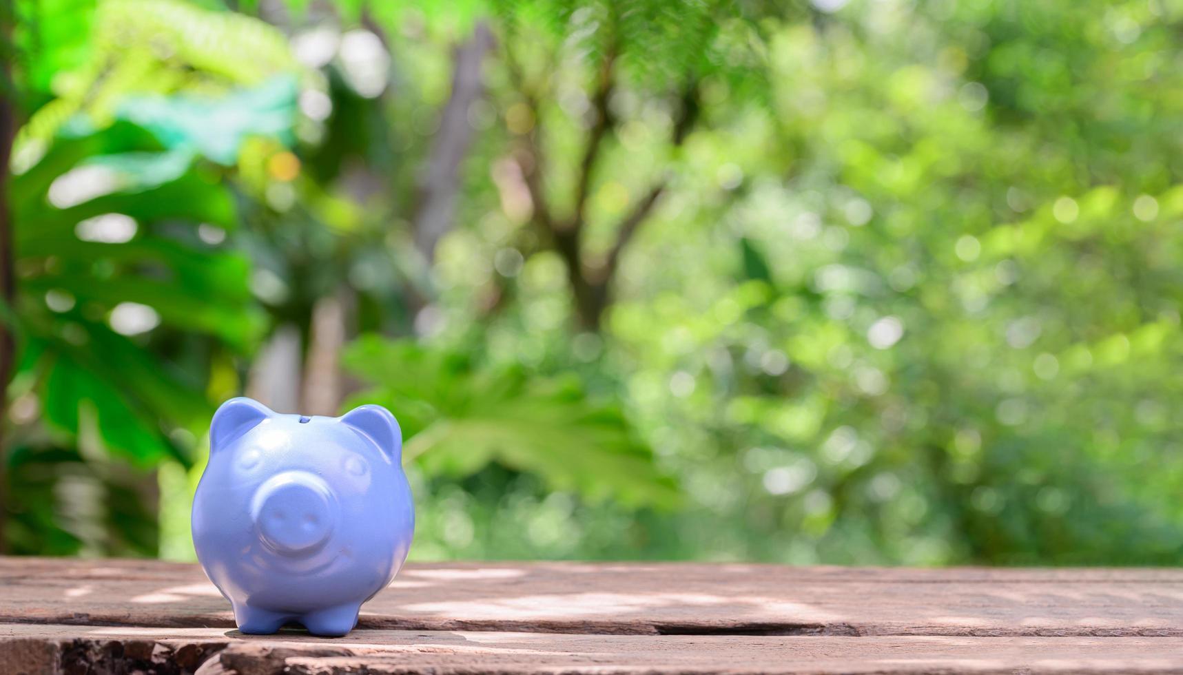 geld besparen concept spaarvarken foto