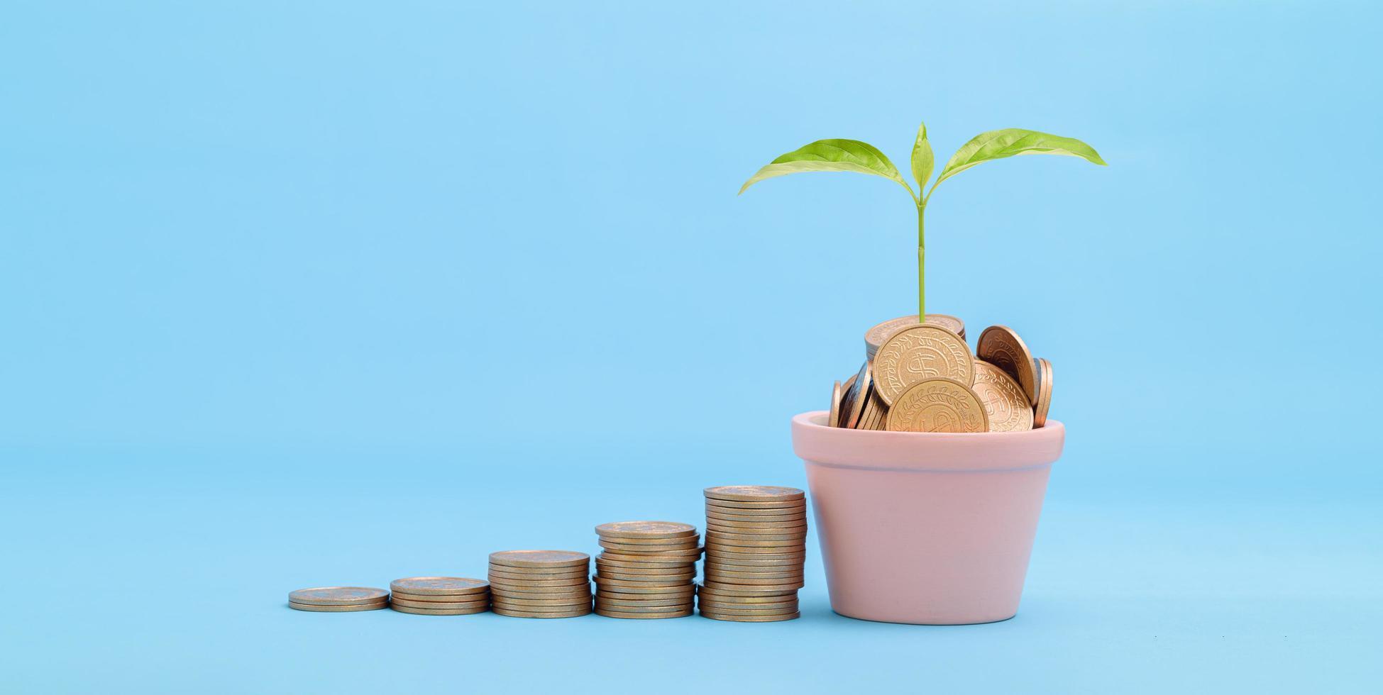 concept voorraad investeringen geld verzamelen gestapelde munten foto