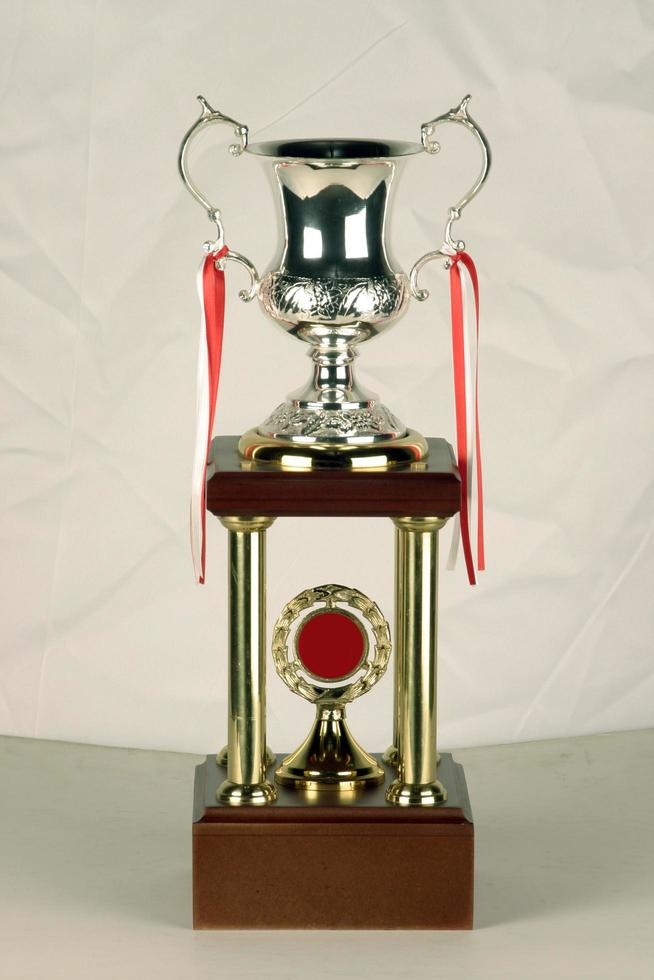 awardmodel gemaakt van mijnen zoals brons, zilver of messing foto