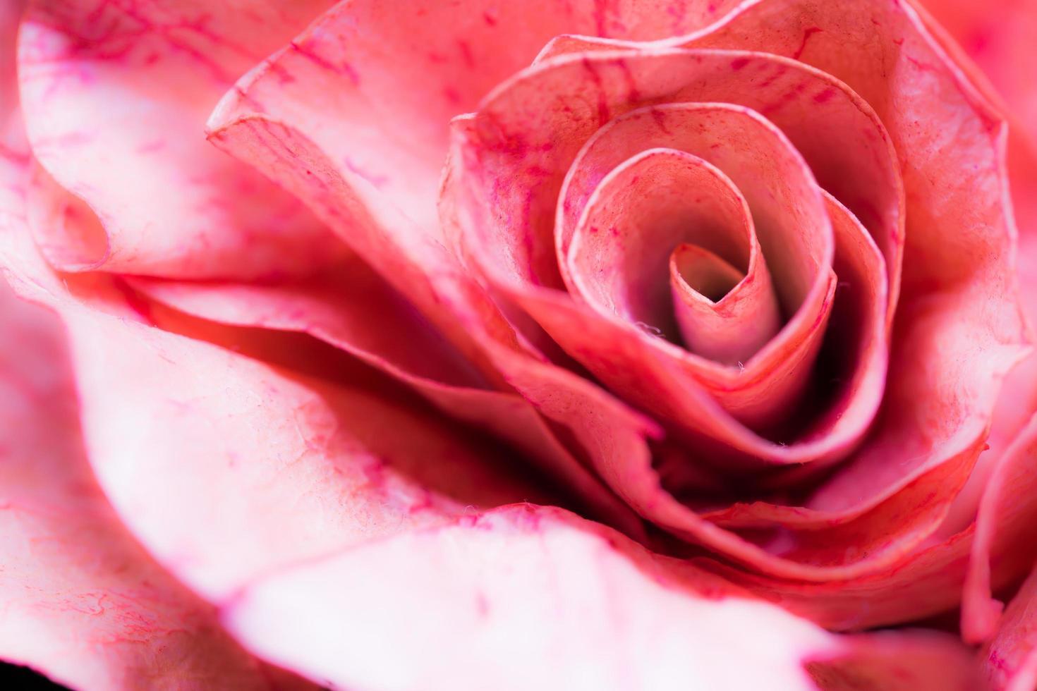 roze papier ambachtelijke, close-up van roos maken van papier voor abstracte achtergrond. foto