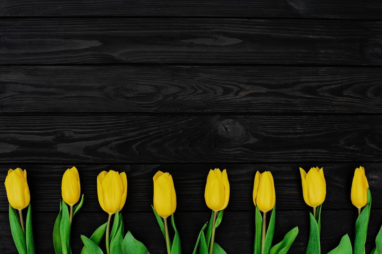 een rij gele lente tulp bloemen op een zwarte houten achtergrond. plat liggen. ruimte kopiëren. Moederdag. internationale Vrouwendag. foto