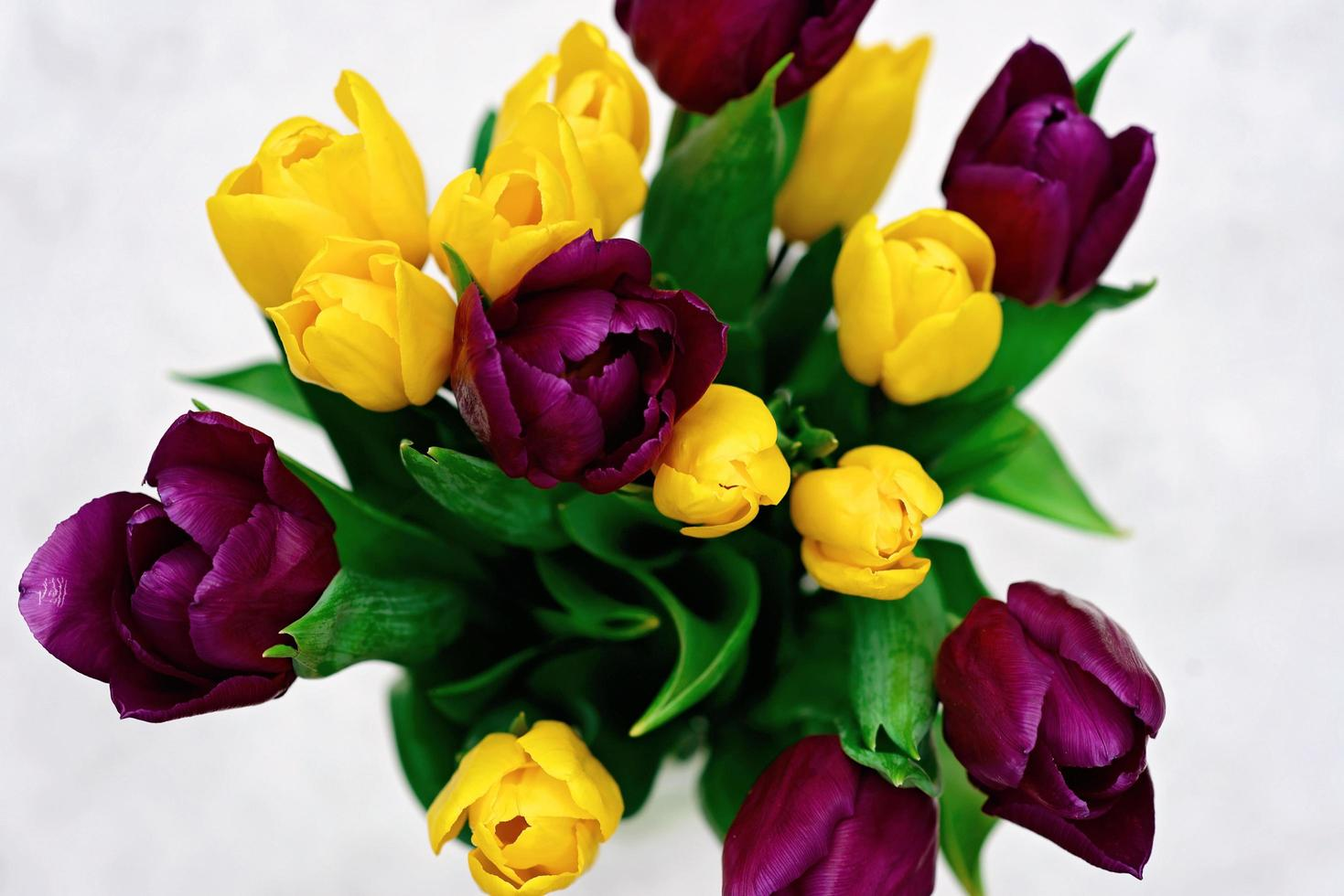 boeket van paarse en gele lente tulp bloemen op een lichte achtergrond close-up. ruimte kopiëren. Moederdag. internationale Vrouwendag. foto