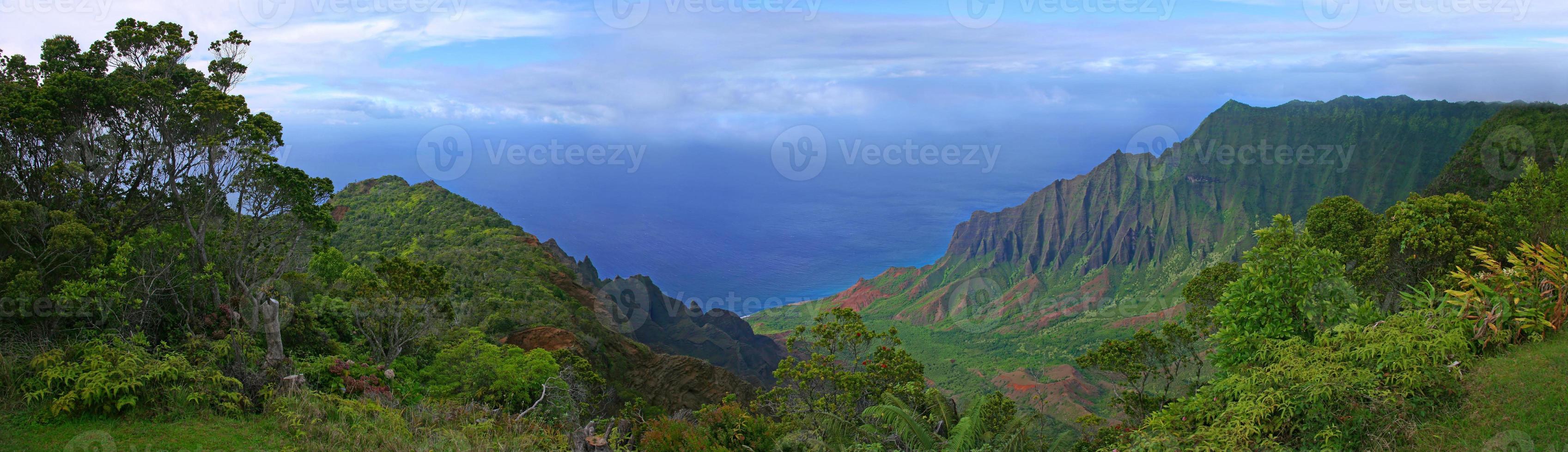 prachtig uitzicht op de kustlijn van Kauai in Hawaï foto