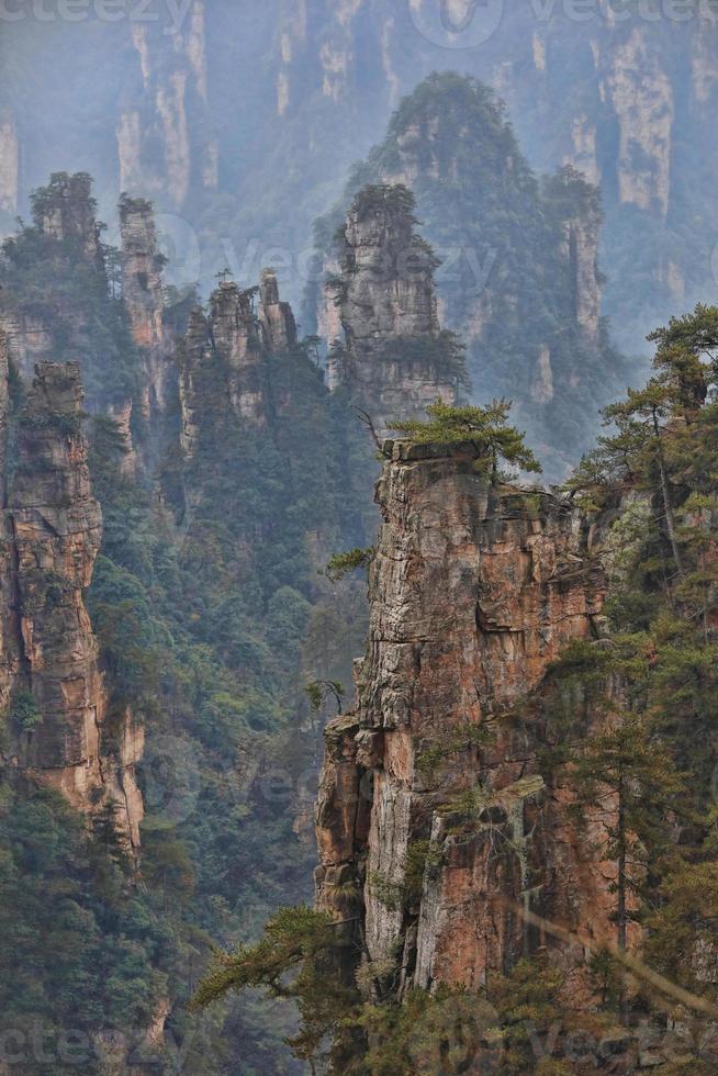 mooie zoon des hemels berg tianzishan in de Chinese provincie Hunan foto