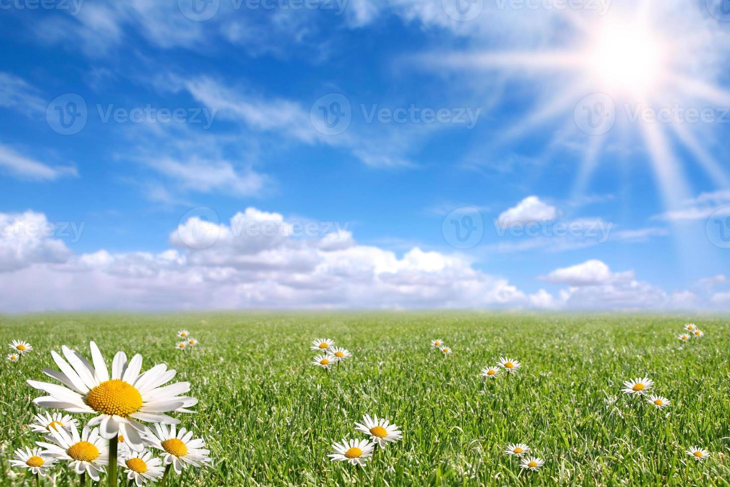 fijne heldere lentedag buiten foto