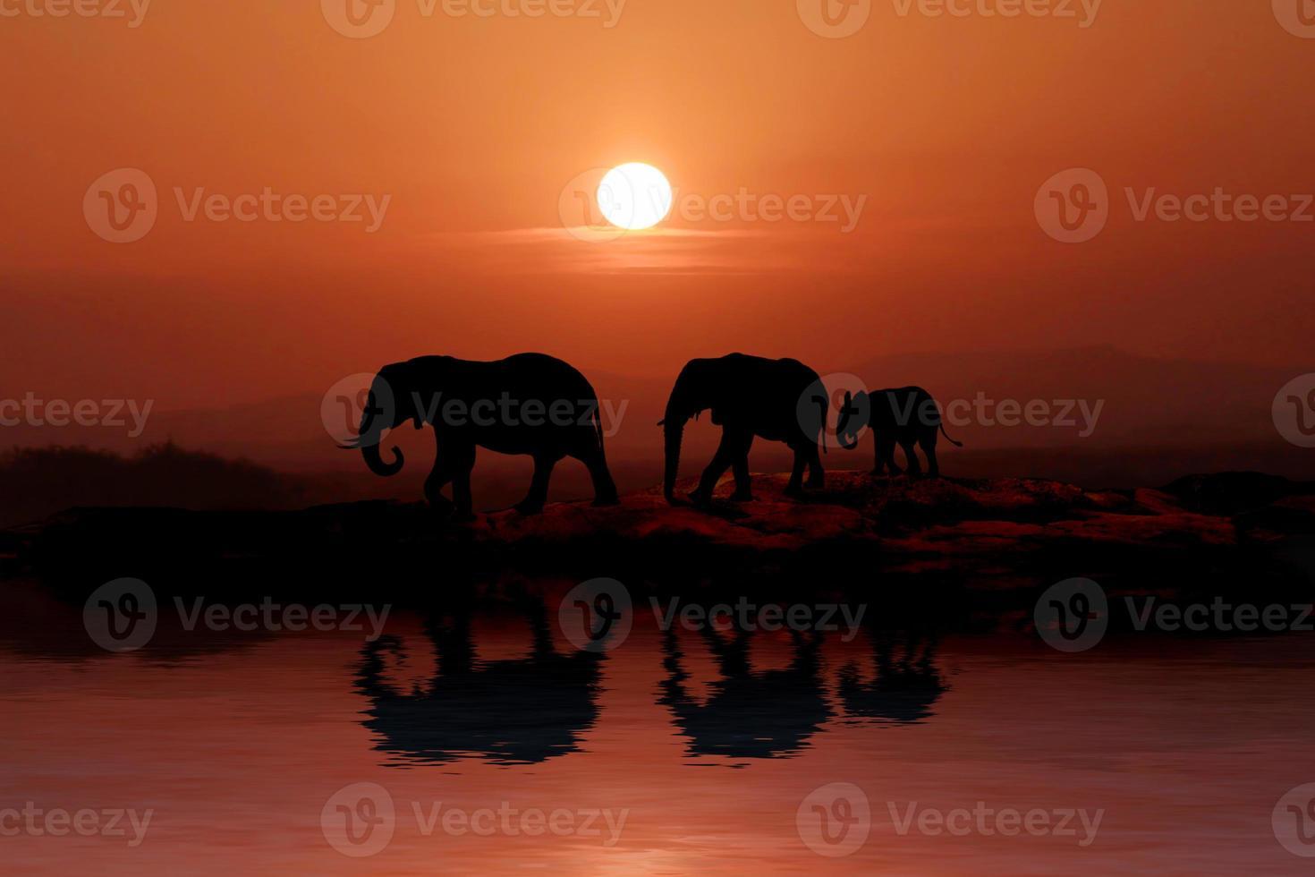 mooi silhouet van Afrikaanse olifanten bij zonsondergang foto