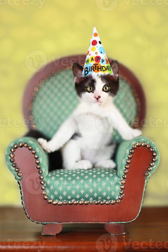 kitten zittend op een stoel foto