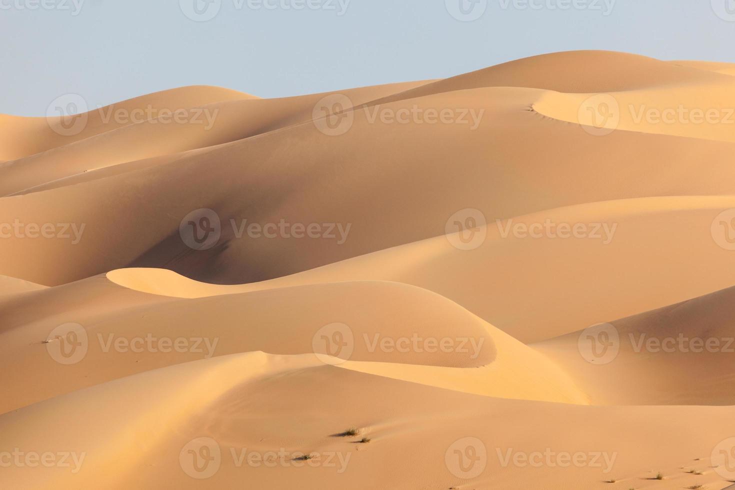 duinen in de lege kwart woestijn foto