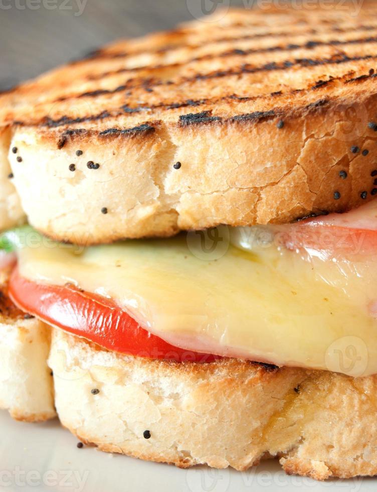 kaas smelt gegrilde sandwich foto