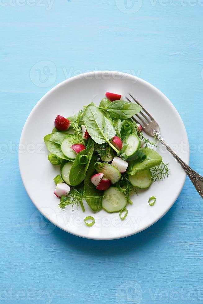 salade met jonge radijs op plaat foto