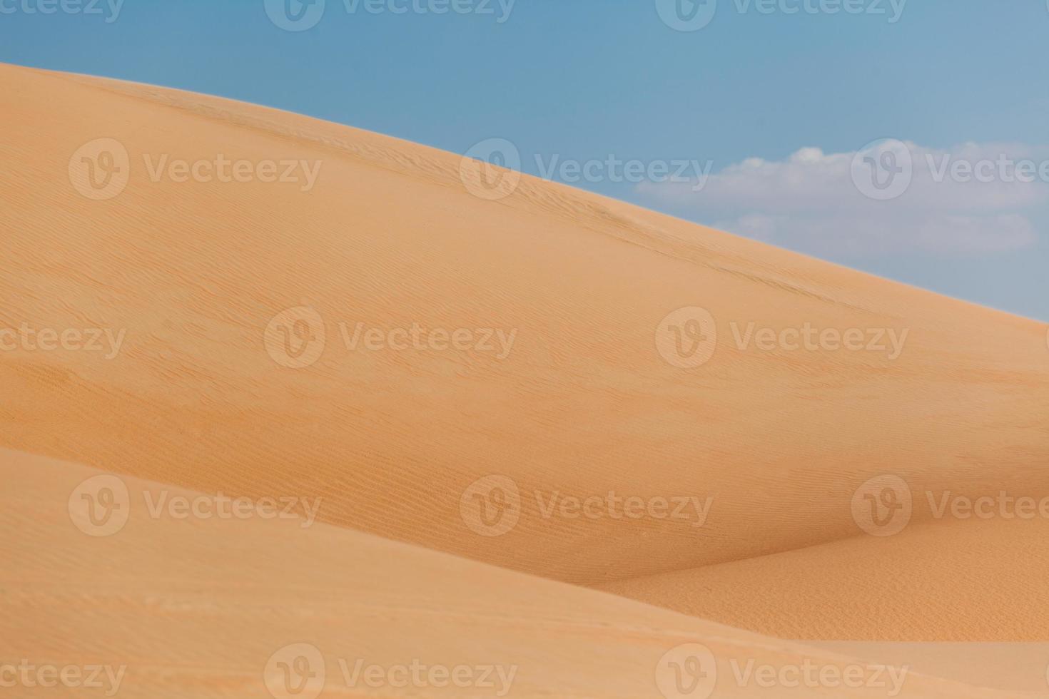 duinen foto