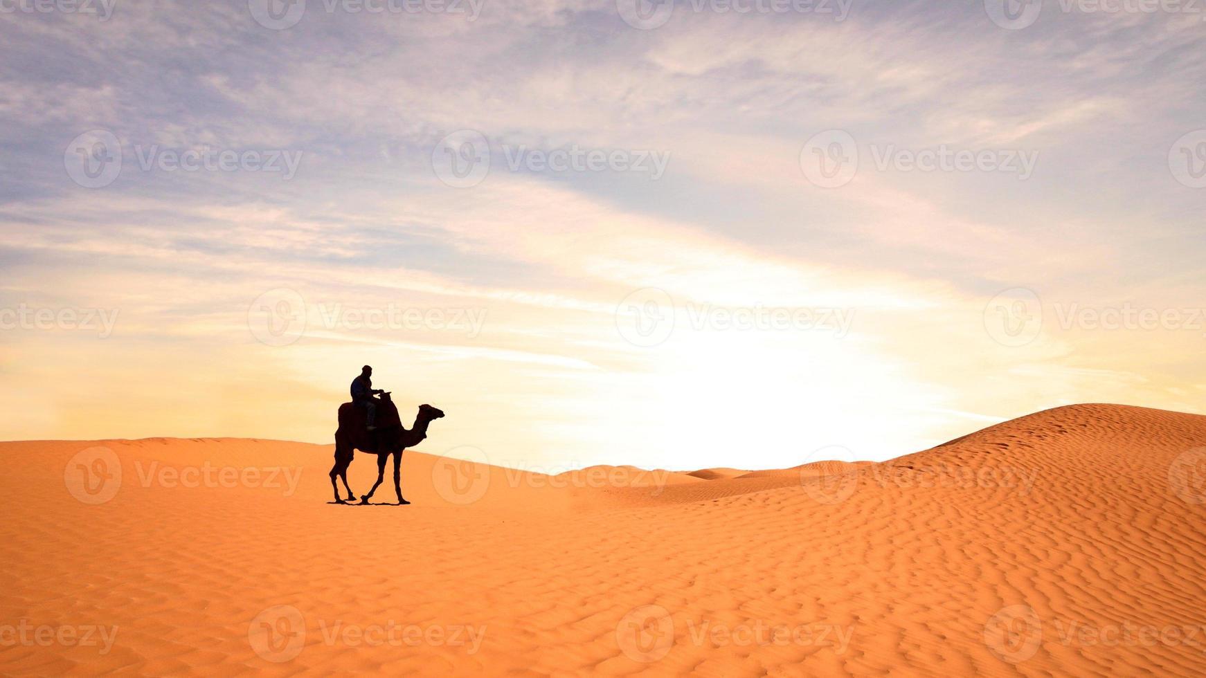 mooi uitzicht op een kameel in de Sahara foto