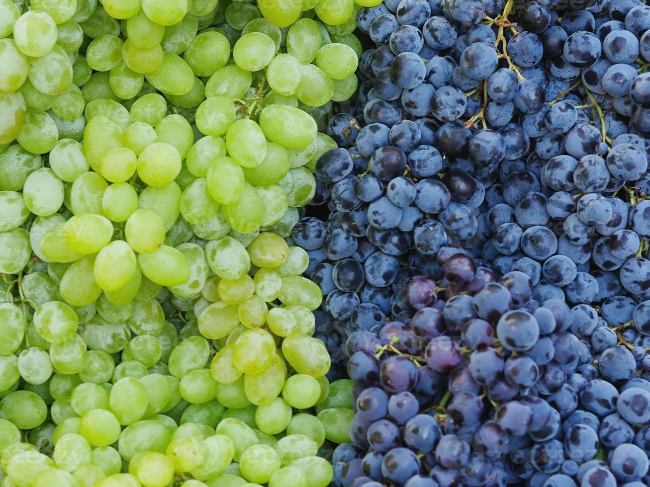 markt rode wijndruiven foto