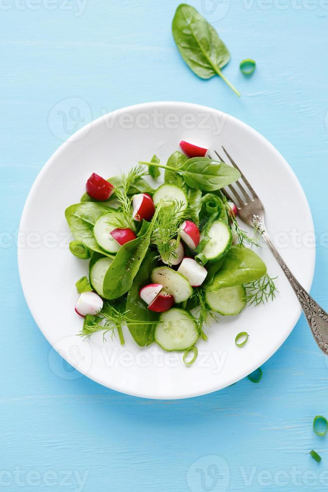 zomersalade met radijs en komkommer foto