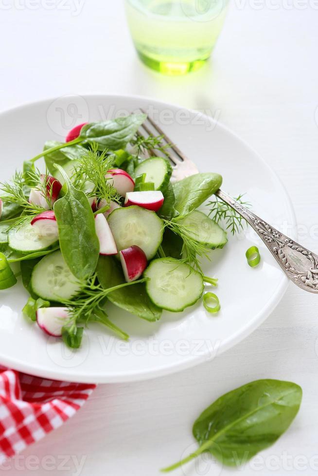 frisse salade met radijs foto