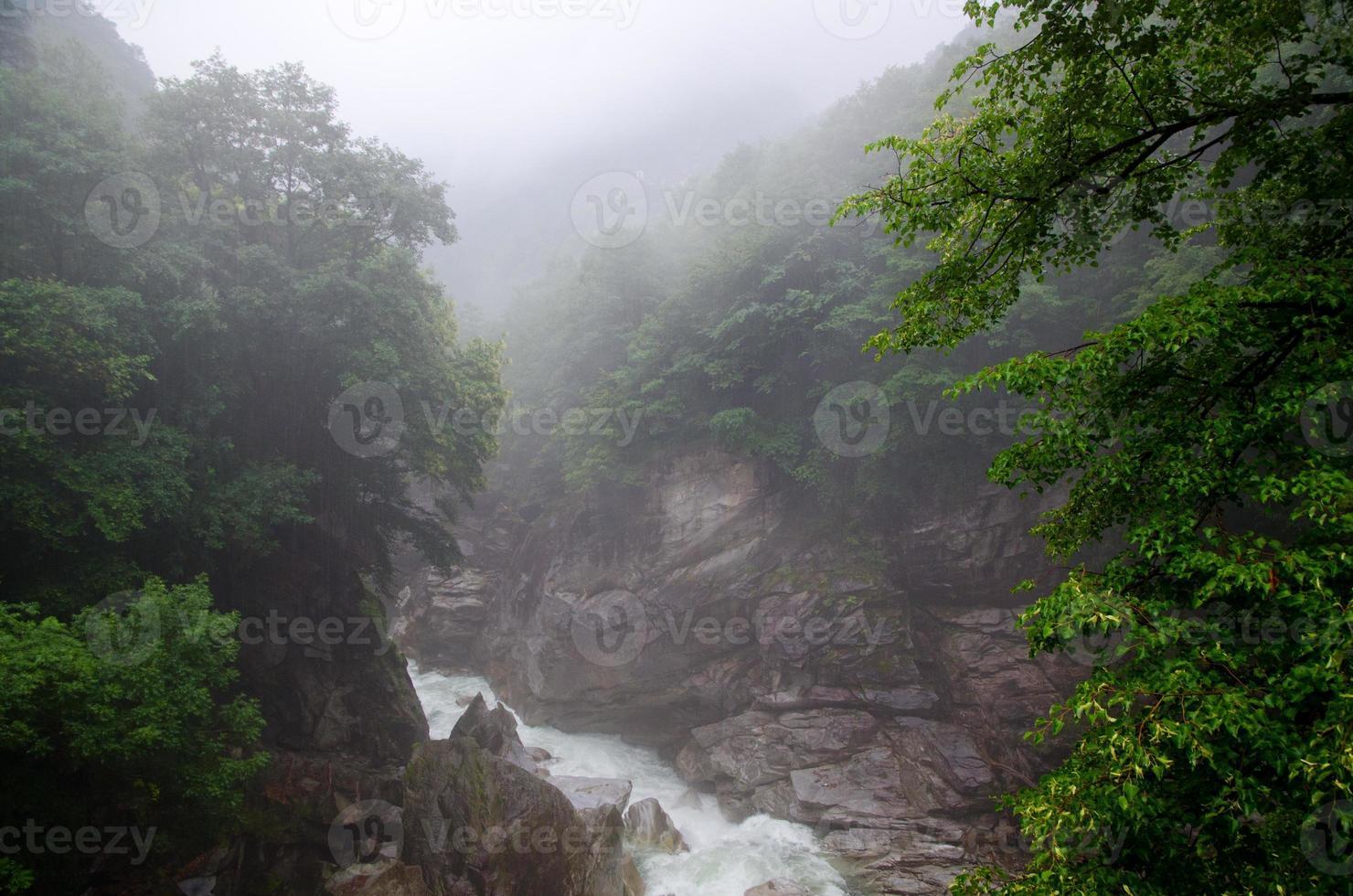 mistige rivier foto