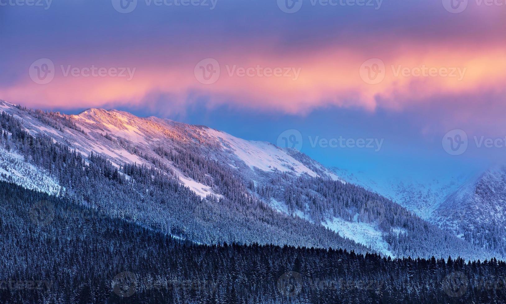 geweldig winterlandschap foto