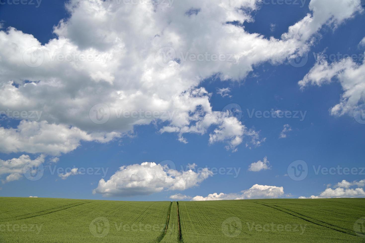 lente landschap foto