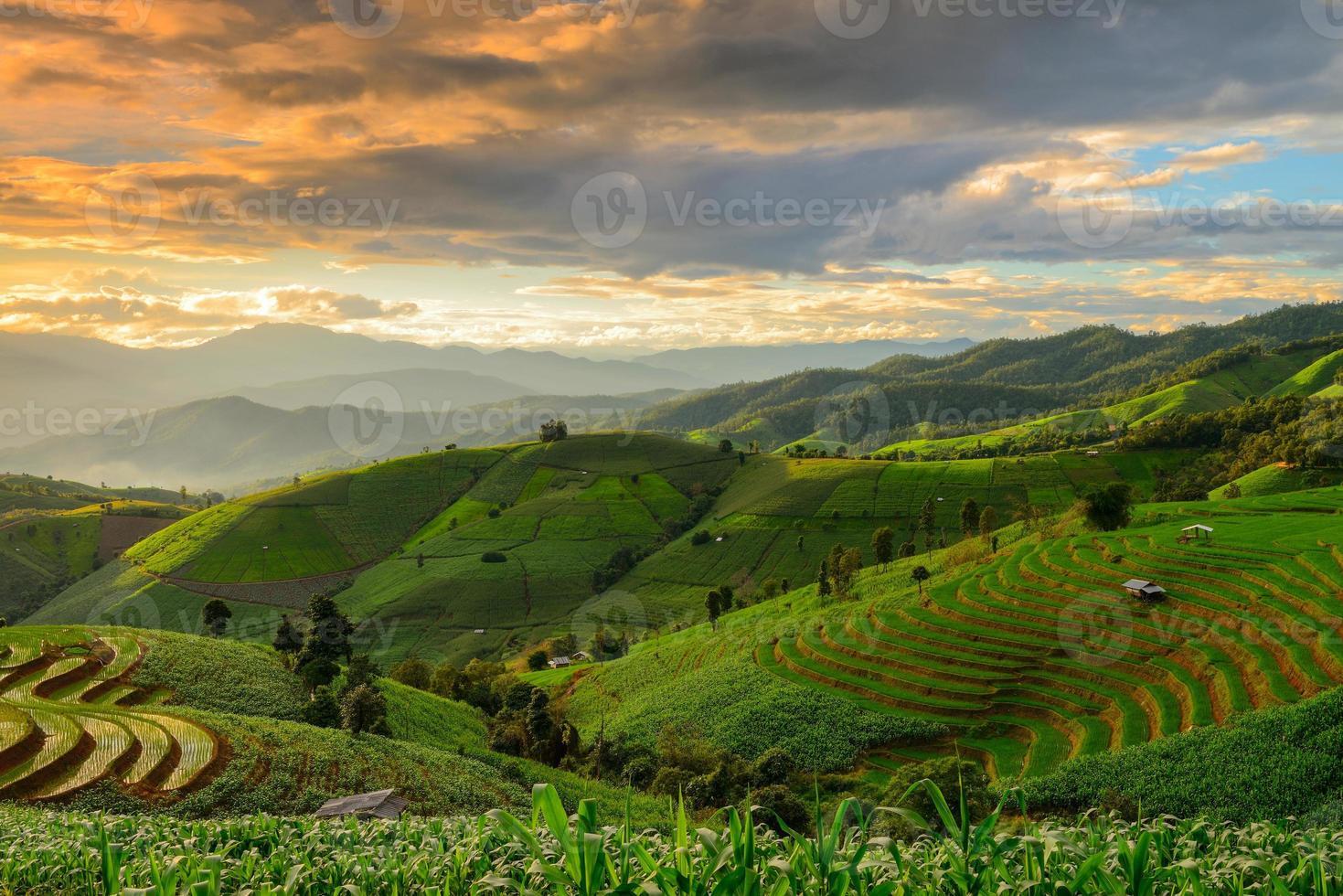 terrasvormige rijst en landschap chiang mai foto