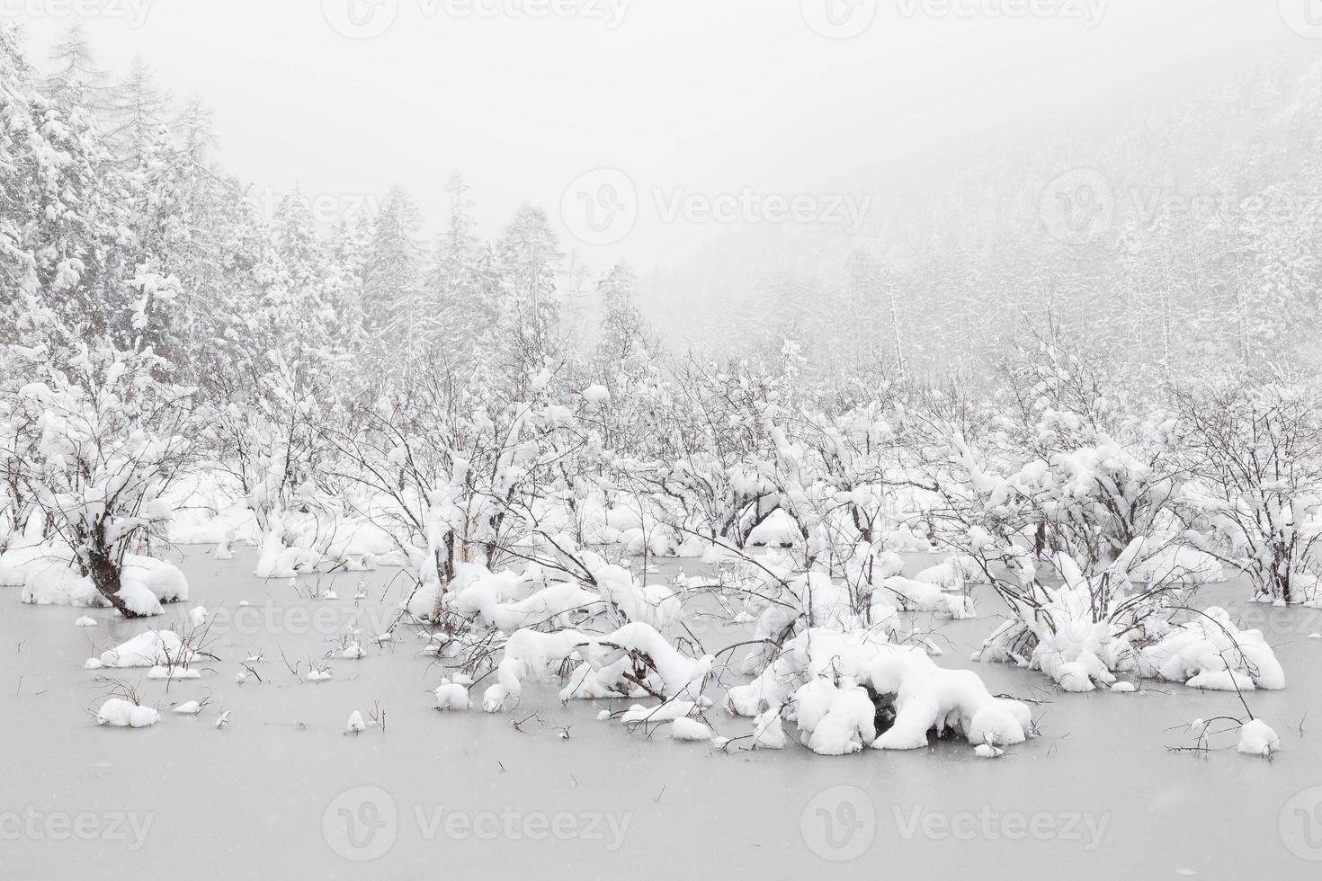 bevroren meer foto