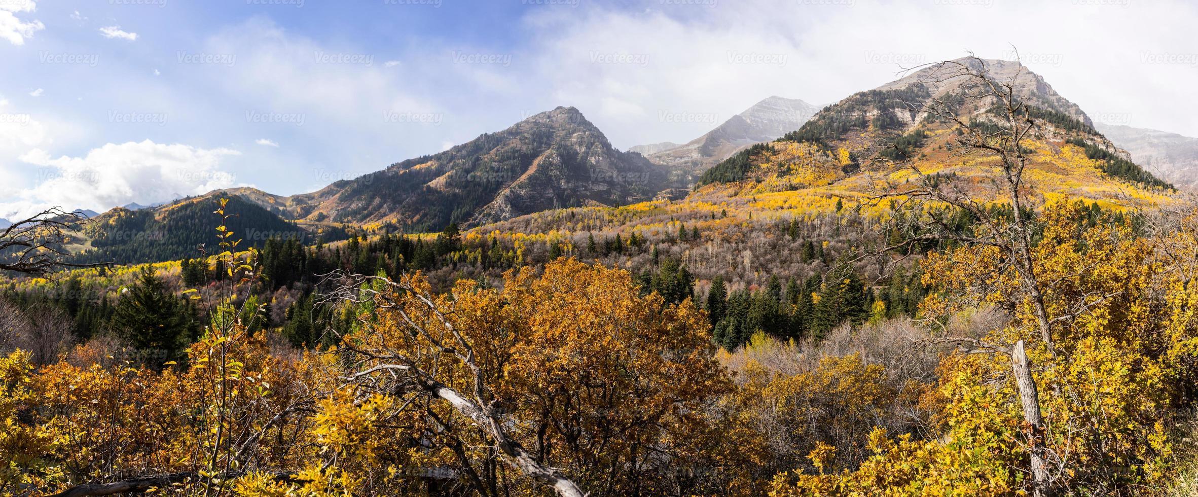 herfst in de wasatch-bergen langs de Alpenlus (Utah) foto