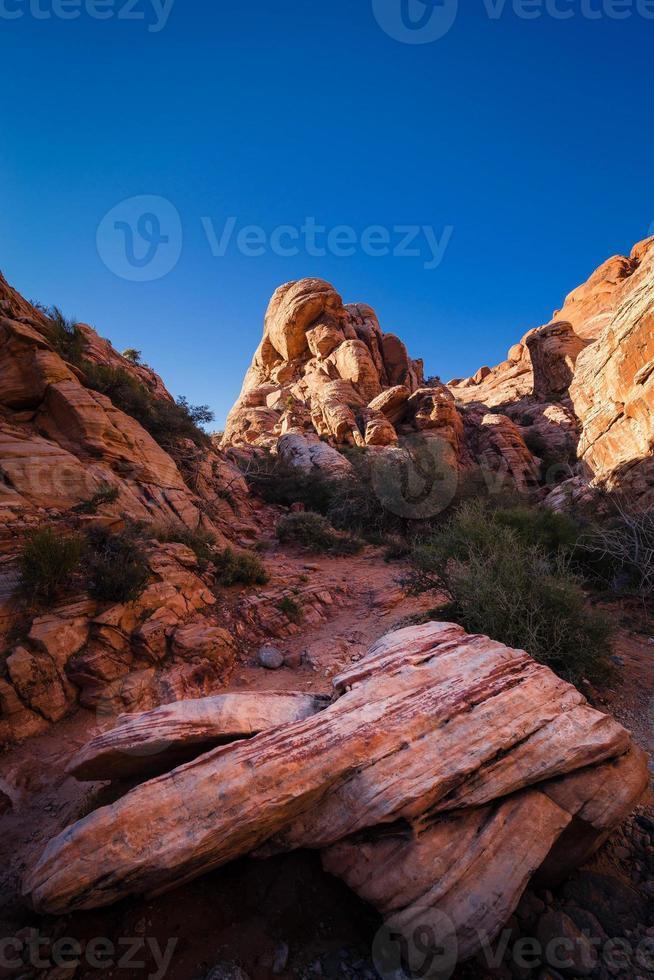 wandelen in Red Rock Canyon foto