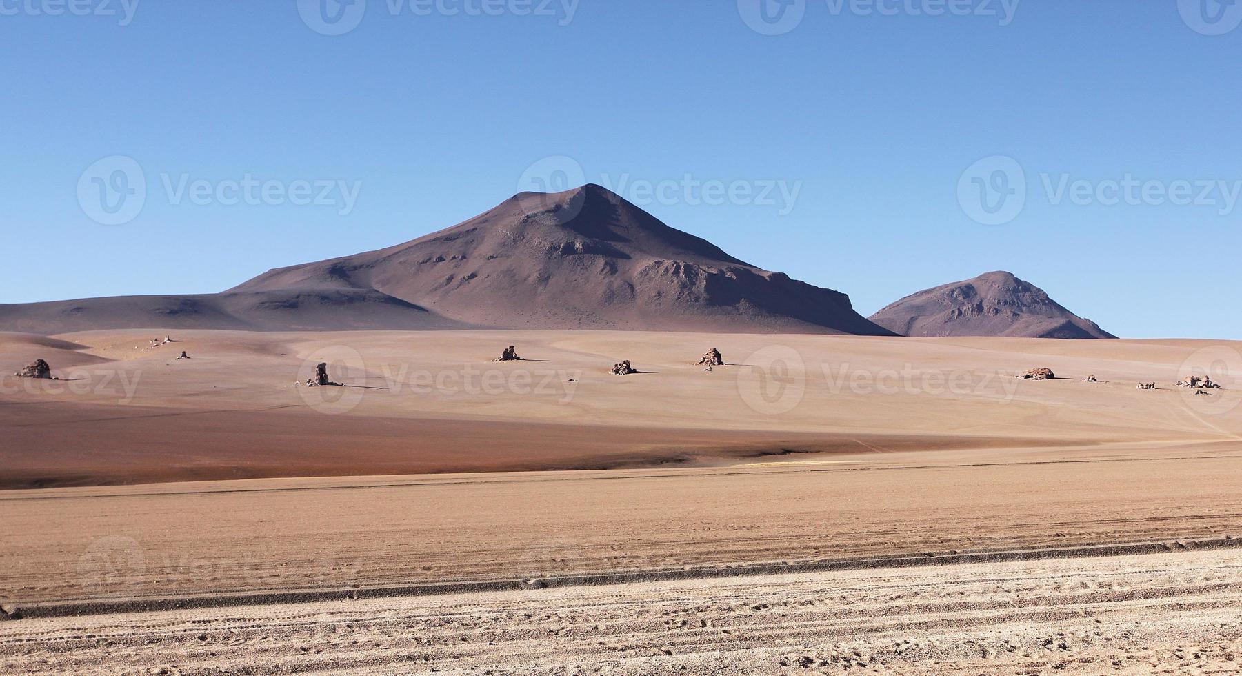 salvador dali woestijn foto