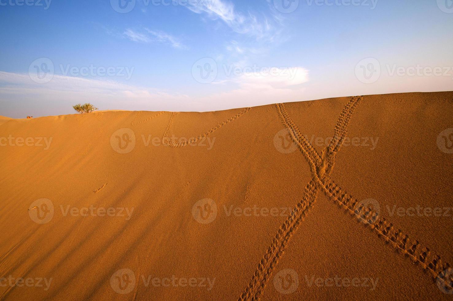 woestijn, zandduinen bij zonsondergang foto