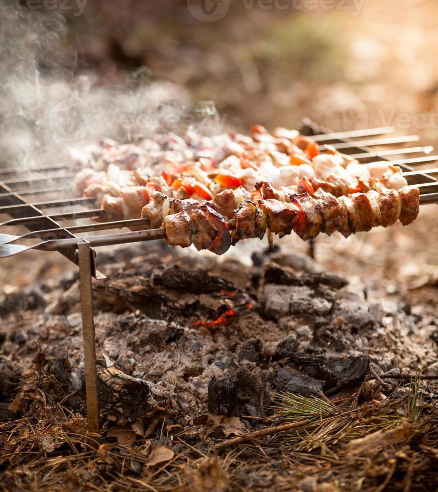 foto van kebab in brand bij bos