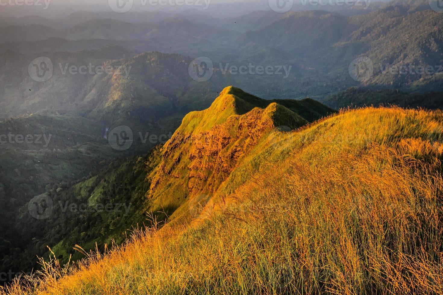bergtop in regenwoud foto