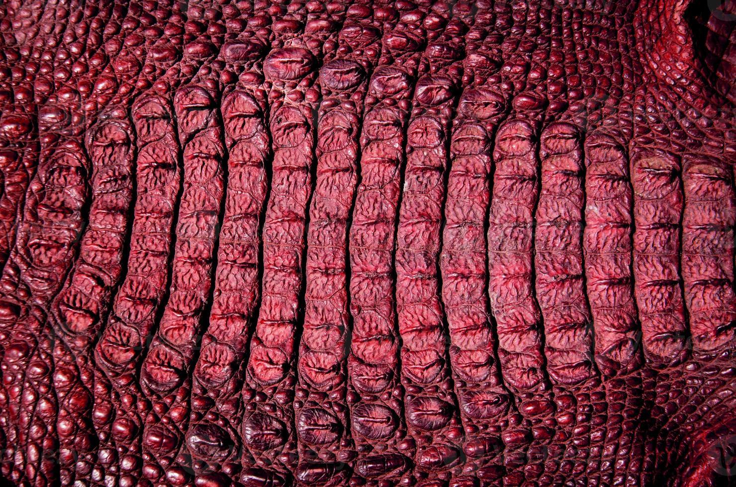 krokodillenleer textuur achtergrond foto