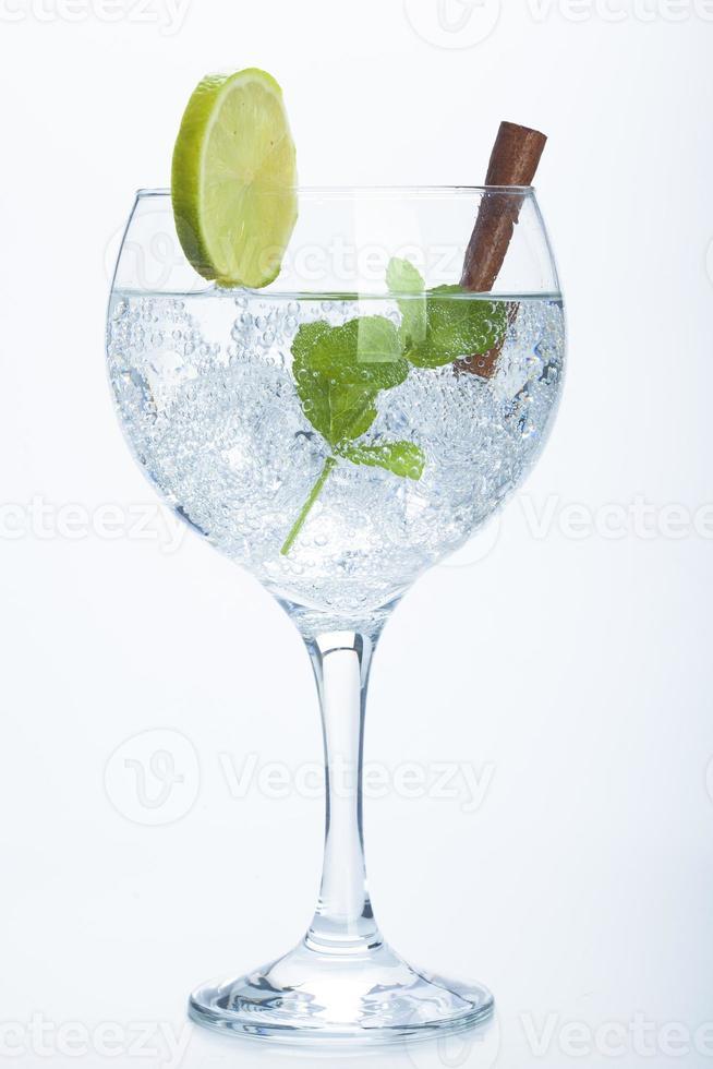 citroen en kaneel gin tonic geïsoleerd over wit foto