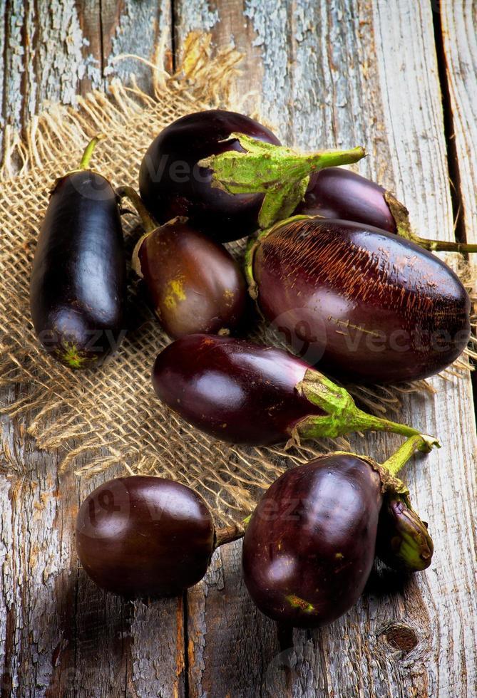 aubergines foto