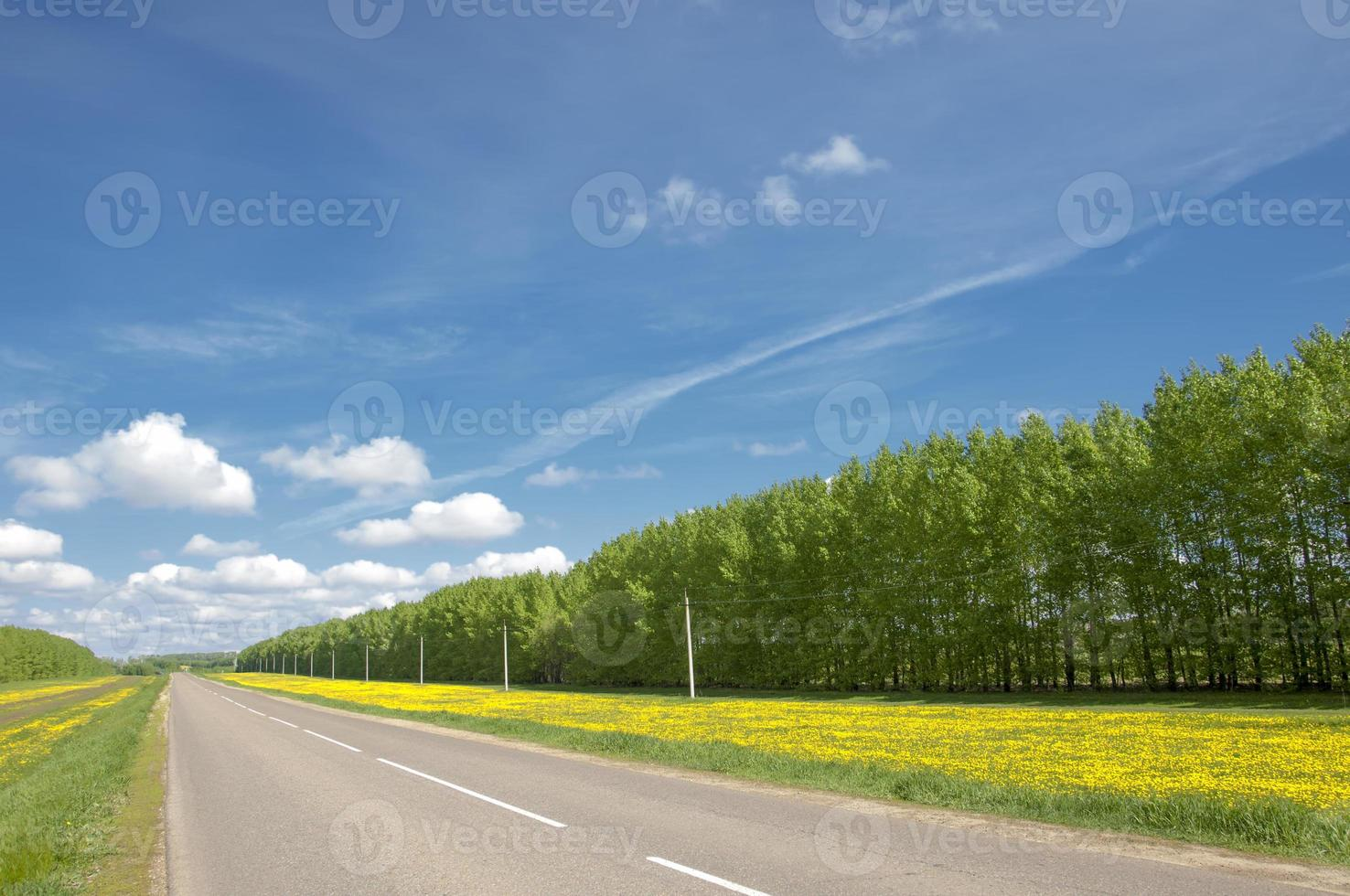landweg. weg in de herfst foto