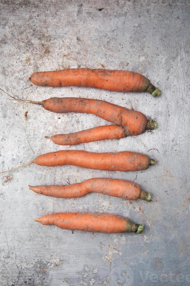 biologische wortelen foto