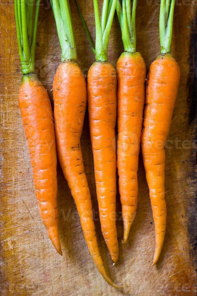 wortel foto