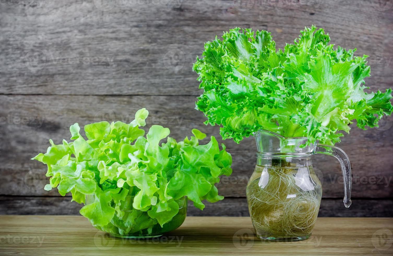frillice ijsberg en groene eiken sla foto