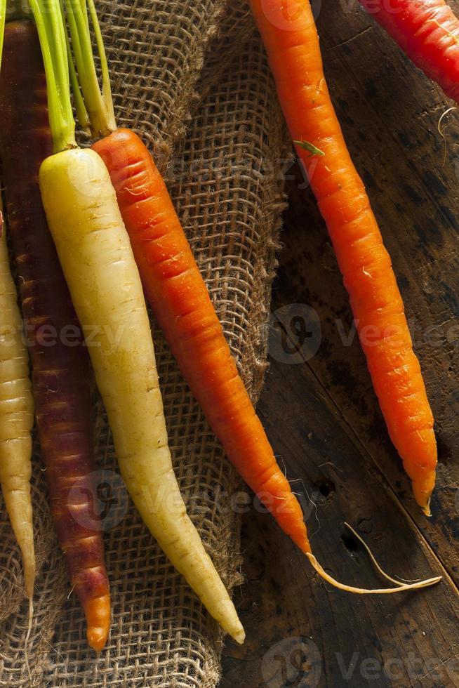 kleurrijke multi gekleurde rauwe wortelen foto