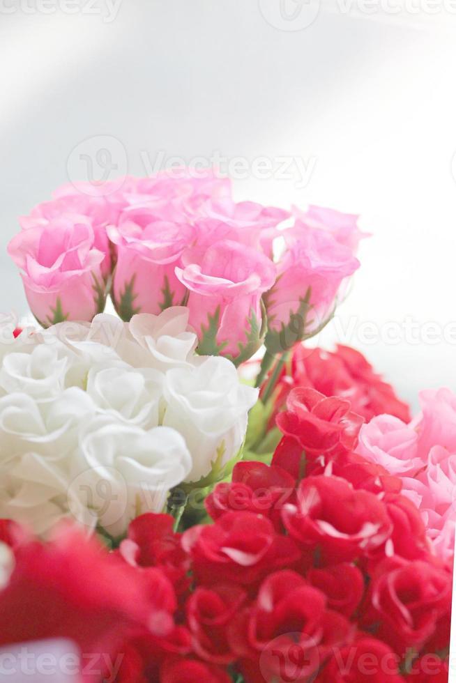 rode en witte rozen. foto