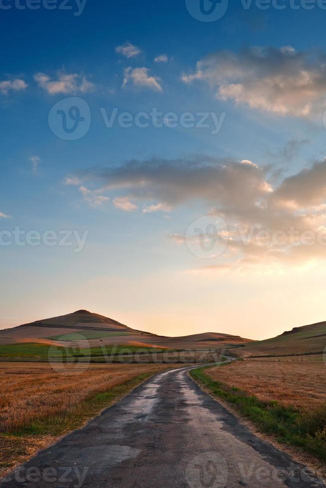 landelijke weg tussen gele graanvelden, vers geoogst foto