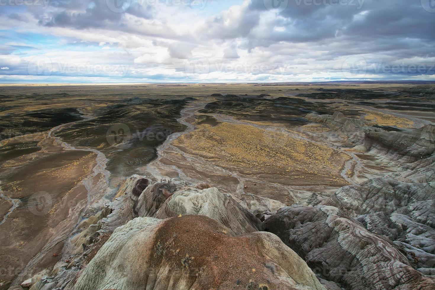blauwe mesa, nationaal park versteend bos foto