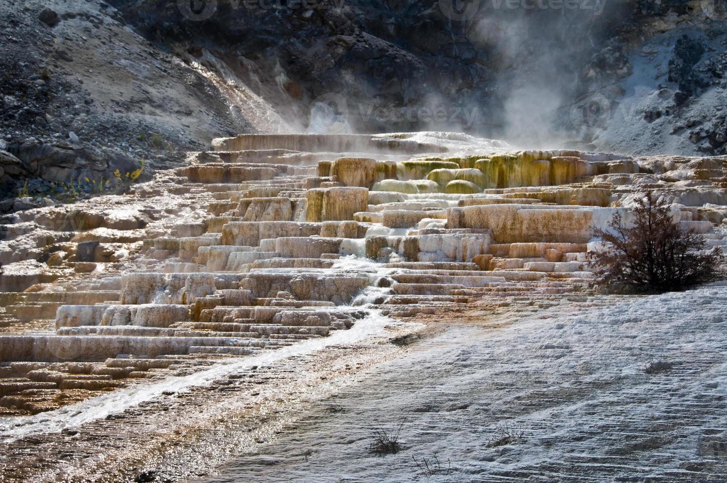 mammoet warmwaterbronnen, yellowstone national park, usa foto