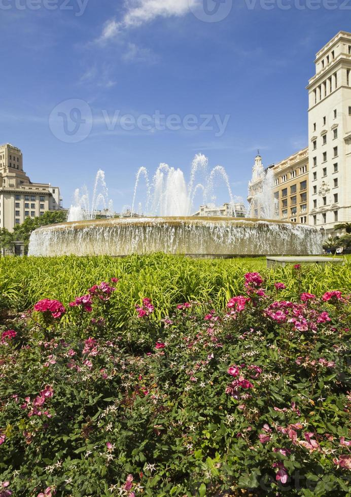 bloemen in Catalonië vierkant. Barcelona, Spanje. foto