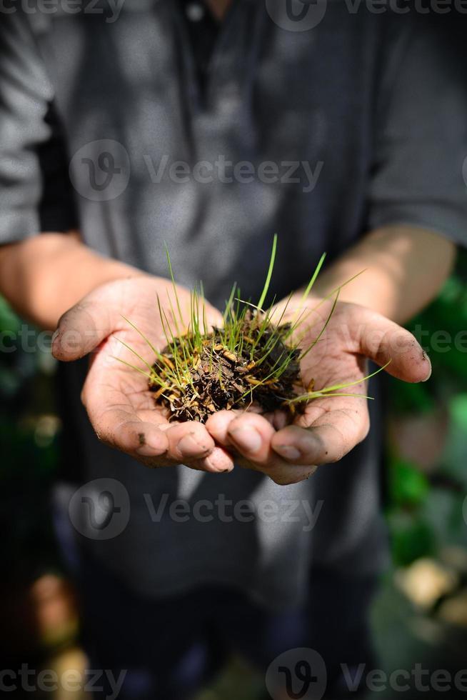 jonge man handen met een groene jonge plant., dag van de aarde foto