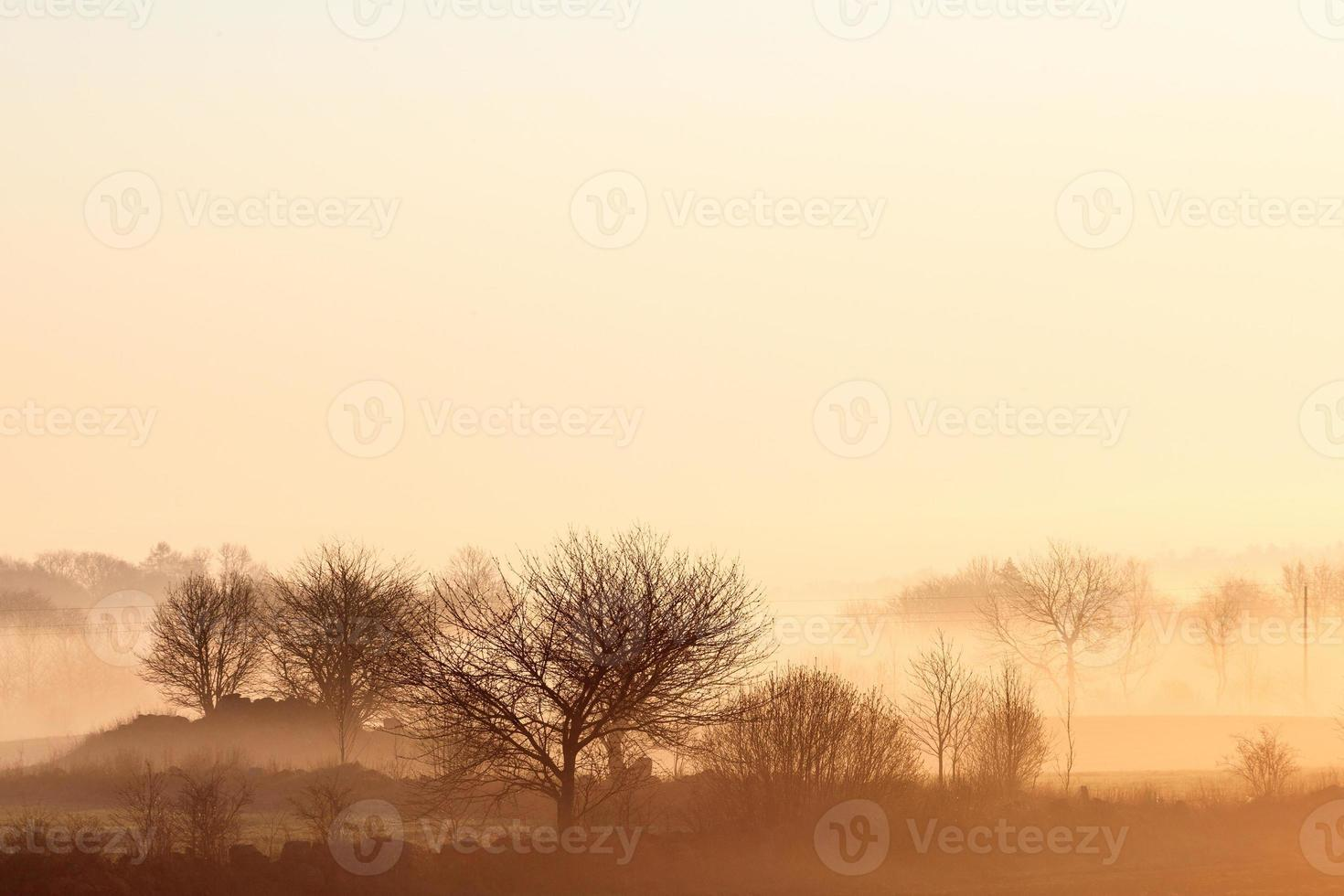 zonsopgang boven rurale landschap foto