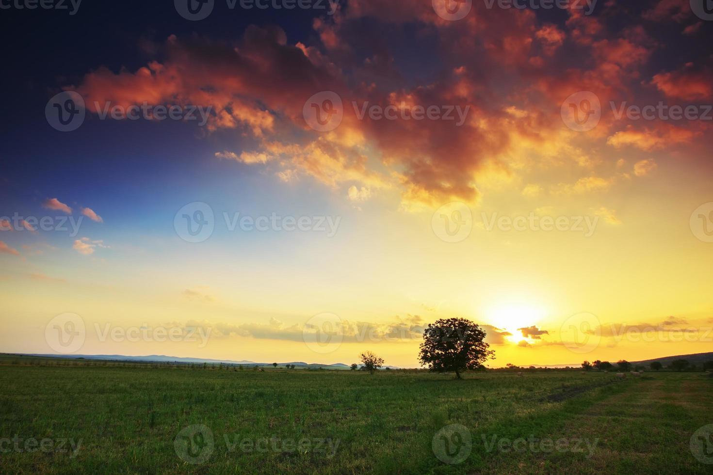 lente landschap bij zonsondergang foto